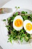 Αυγά με τους νεαρούς βλαστούς στο πιάτο Στοκ Φωτογραφία