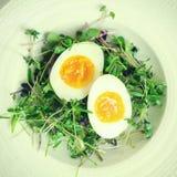 Αυγά με τους νεαρούς βλαστούς στο πιάτο (instagram φίλτρο) Στοκ εικόνα με δικαίωμα ελεύθερης χρήσης