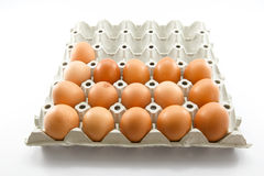 Αυγά μιας κότας σε αβλαβή Στοκ φωτογραφίες με δικαίωμα ελεύθερης χρήσης
