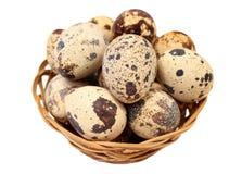Αυγά νησοπέρδικων σε ένα καλάθι Στοκ Εικόνες