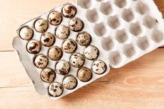 Αυγά νησοπέρδικων σε ένα εμπορευματοκιβώτιο Στοκ Φωτογραφίες