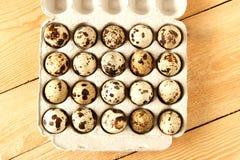 Αυγά νησοπέρδικων σε ένα εμπορευματοκιβώτιο Στοκ Εικόνες