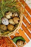 Αυγά νησοπέρδικων στο καλάθι Πάσχα σιτηρέσιο Στοκ εικόνες με δικαίωμα ελεύθερης χρήσης