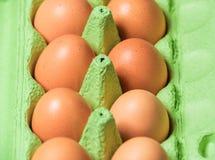αυγά οργανικά Στοκ Φωτογραφίες