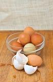 Αυγά οργανικού και κοτόπουλου σειράς ελεύθερα Στοκ Εικόνες