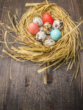 Αυγά ορτυκιών και χρωματισμένα διακοσμητικά αυγά στα σύνορα φωλιών, θέση για τοπ άποψη υποβάθρου κειμένων την ξύλινη αγροτική κον Στοκ εικόνα με δικαίωμα ελεύθερης χρήσης