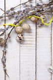Αυγά ορτυκιών, κλάδοι ιτιών και κίτρινη κορδέλλα στο ξύλινο backgro Στοκ Εικόνες