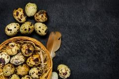 Αυγά ορτυκιών με το διάστημα αντιγράφων Στοκ Εικόνα