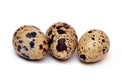 Αυγά ορτυκιών Στοκ εικόνα με δικαίωμα ελεύθερης χρήσης