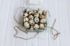 Αυγά ορτυκιών σε ένα διαφανές πλαστικό εμπορευματοκιβώτιο Στοκ Εικόνες