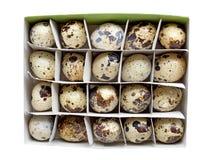 Αυγά ορτυκιών σε ένα κιβώτιο χαρτοκιβωτίων Στοκ Εικόνες