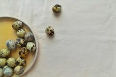 Αυγά ορτυκιών σε ένα στρογγυλό κεραμικό πιάτο στοκ εικόνα με δικαίωμα ελεύθερης χρήσης