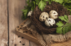 Αυγά ορτυκιών σε μια φωλιά σε ένα ξύλινο υπόβαθρο Στοκ Φωτογραφία