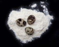 Αυγά ορτυκιών σε μια χούφτα του αλευριού Στοκ Φωτογραφίες