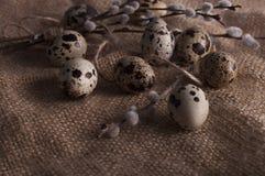Αυγά ορτυκιών στα κλωστοϋφαντουργικά προϊόντα Στοκ Εικόνα