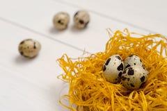 Αυγά ορτυκιών στη διακοσμητική φωλιά σε ένα άσπρο ξύλινο υπόβαθρο Στοκ Φωτογραφίες