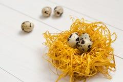 Αυγά ορτυκιών στη διακοσμητική φωλιά σε ένα άσπρο ξύλινο υπόβαθρο Στοκ εικόνες με δικαίωμα ελεύθερης χρήσης