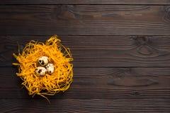 Αυγά ορτυκιών στη διακοσμητική φωλιά στο σκοτεινό ξύλινο υπόβαθρο κορυφαία όψη διάστημα αντιγράφων Στοκ εικόνα με δικαίωμα ελεύθερης χρήσης