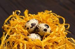 Αυγά ορτυκιών στη διακοσμητική φωλιά στο σκοτεινό ξύλινο υπόβαθρο Στοκ φωτογραφία με δικαίωμα ελεύθερης χρήσης