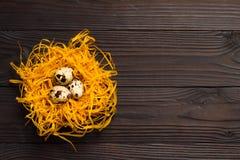 Αυγά ορτυκιών στη διακοσμητική φωλιά στο σκοτεινό ξύλινο υπόβαθρο κορυφαία όψη Στοκ Εικόνες