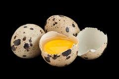 αυγά ορτυκιών στο Μαύρο Στοκ φωτογραφίες με δικαίωμα ελεύθερης χρήσης