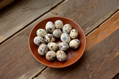 Αυγά ορτυκιών στο πιάτο Στοκ Φωτογραφίες