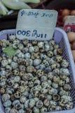 Αυγά ορτυκιών στο bazaar στοκ φωτογραφίες με δικαίωμα ελεύθερης χρήσης