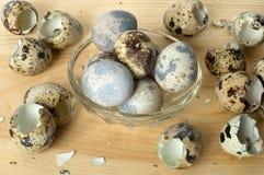 Αυγά ορτυκιών. Στοκ Φωτογραφίες