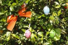 Αυγά Πάσχας ένας βρόχος Στοκ Εικόνα