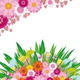 αυγά Πάσχας ανασκόπησης floral Στοκ Εικόνες