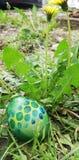Αυγά Πάσχας στοκ φωτογραφία με δικαίωμα ελεύθερης χρήσης