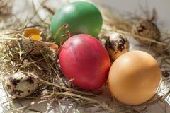 Αυγά Πάσχας κάτω από τον ήλιο άνοιξη Στοκ φωτογραφία με δικαίωμα ελεύθερης χρήσης