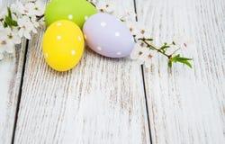 Αυγά Πάσχας και άνθος άνοιξη Στοκ Εικόνες