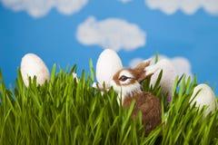 Αυγά Πάσχας και ένα κουνέλι παιχνιδιών Στοκ φωτογραφίες με δικαίωμα ελεύθερης χρήσης