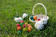 Αυγά Πάσχας και καλάθι Στοκ Εικόνα