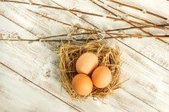 Αυγά Πάσχας και κλάδοι ιτιών Στοκ φωτογραφία με δικαίωμα ελεύθερης χρήσης