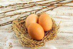 Αυγά Πάσχας και κλάδοι ιτιών Στοκ Εικόνες