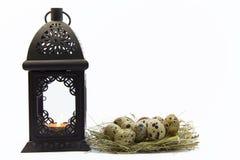 Αυγά Πάσχας και φανάρι στοκ φωτογραφίες
