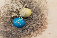 Αυγά Πάσχας και φωλιές στοκ φωτογραφίες με δικαίωμα ελεύθερης χρήσης