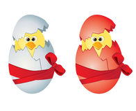 αυγά Πάσχας κοτόπουλων Στοκ Εικόνα
