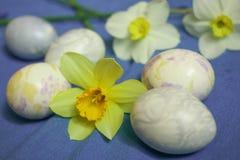 Αυγά Πάσχας με τα λουλούδια daffodils στο μπλε υπόβαθρο Στοκ φωτογραφία με δικαίωμα ελεύθερης χρήσης