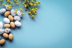 Αυγά Πάσχας με τον κλάδο ανθών στην μπλε χλεύη άποψης υποβάθρου τοπ Στοκ Εικόνες