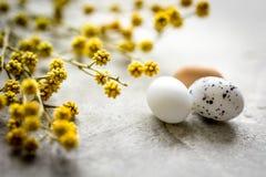Αυγά Πάσχας με τον κλάδο ανθών στο άσπρο υπόβαθρο Στοκ Φωτογραφίες