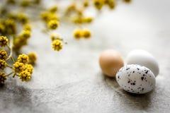 Αυγά Πάσχας με τον κλάδο ανθών στο άσπρο υπόβαθρο Στοκ εικόνες με δικαίωμα ελεύθερης χρήσης