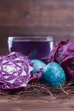 Αυγά Πάσχας που βάφονται με το λάχανο Στοκ Εικόνες
