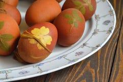 Αυγά Πάσχας που χρωματίζονται με το κρεμμύδι Στοκ εικόνα με δικαίωμα ελεύθερης χρήσης