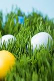 Αυγά Πάσχας που χρωματίζονται στα διαφορετικά χρώματα στη χλόη Στοκ Φωτογραφίες