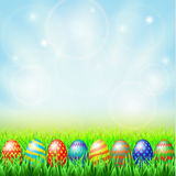 Αυγά Πάσχας, πράσινο ηλιόλουστο λιβάδι Στοκ Εικόνα