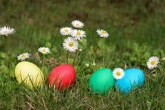 Αυγά Πάσχας σε μια σειρά στη χλόη στοκ εικόνες