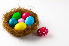 Αυγά Πάσχας σε μια φωλιά και ένα ρόδινο αυγό Πάσχας Στοκ φωτογραφία με δικαίωμα ελεύθερης χρήσης